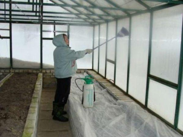 Обработка теплицы весной перед посадкой