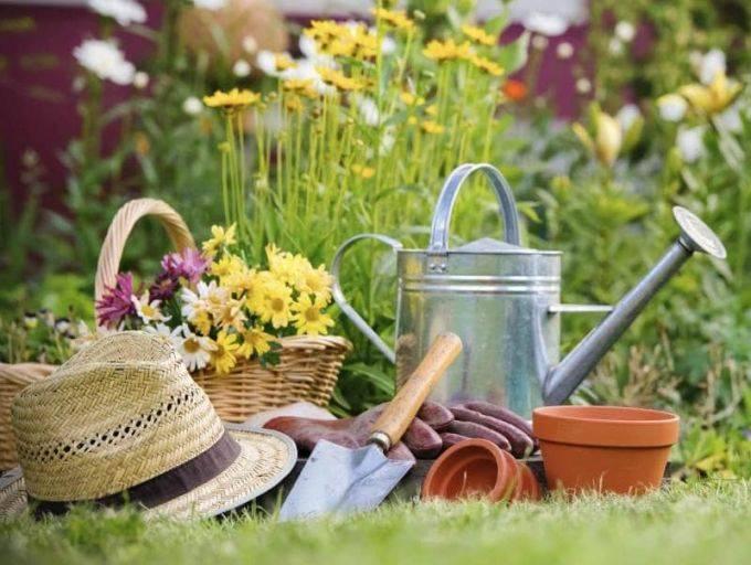 Подробный лунный календарь на март 2020 года и на весь год садовода и огородника, приметы