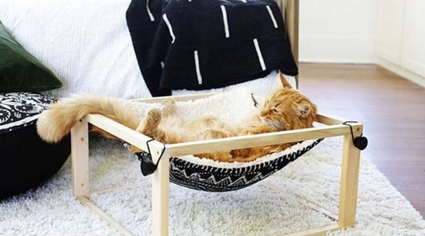 Как сделать лежак для собаки и кота своими руками
